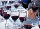 SYRAH/SHIRAZ WINE TASTING