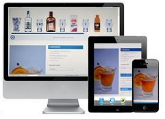 The restaurant coach web design project